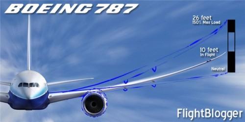 787wing