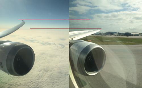 787ウイング比較
